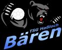 TSG Haßloch | Abteilung Handball Logo
